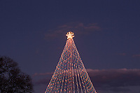 """If you missed the tree lighting ceremony don't worry, the tree will be lit up every night from 6 pm to 10 p.m. Some of the concessions will still be there as well as a new music and light show called """"Flipped on Christmas"""" starting on December 15th. Make sure to take a break from the hustle and bustle of the holiday season, head out to Zilker Park and take a spin under the Zilker Tree."""