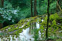 France, Haute-Marne (52), Rolampont, la tuffière de Rolampont