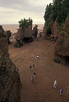 Bay of Fundy, Hopewell Cape, low tide, New Brunswick, Hopewell Rocks, NB, Canada, Tourists exploring Flower Pot Rocks at low tide on the Bay of Fundy at The Rocks Provincial Park on Hopewell Cape in New Brunswick.