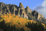 San Juan Mountains and Aspen trees, autumn, Telluride, Colorado.