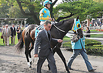 Justin Phillip, ridden by Ramon Dominguez, runs in the Vosburgh Invitational Stakes (GI) at Belmont Park in Elmont, New York on September 29, 2012.  (Bob Mayberger/Eclipse Sportswire)