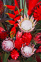 flowers, ginger, tropical floral display, Big Island, Hawaii, Pacific Ocean