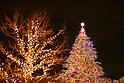 Christmas illumination in Tokyo