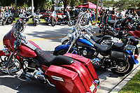 Cotee River5514.JPG<br /> New Port Richey, FL 10/13/12<br /> Motorcycle Stock<br /> Photo by Adam Scull/RiderShots.com
