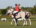 WELLINGTON, FL - NOVEMBER 25:  Scenes from USPA International Cup, Mike Azzaro (Red) with Caio Mello (Yellow). Team USA  defeats Team Brazil 9 - 7 in the final of the USPA International Cup at the Grand Champions Polo Club, on November 25, 2017 in Wellington, Florida. (Photo by Liz Lamont/Eclipse Sportswire/Getty Images)