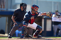 Danville Braves catcher Ricardo Rodriguez (49) frames a pitch as home plate umpire Justin Juska looks on during the game against the Bristol Pirates at American Legion Post 325 Field on July 1, 2018 in Danville, Virginia. The Braves defeated the Pirates 3-2 in 10 innings. (Brian Westerholt/Four Seam Images)