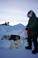 """Sunday March 11, 2007   ----   Volunteer drug tester, known as the """" P-Team"""",  Melanie Hull gets a urine sample from a Lance Mackey dog at the Unalakleet checkpoint on Sunday evening."""