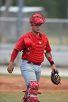 St. Louis Cardinals catcher Frankie Rodriguez (31) during a minor league spring training game against the New York Mets on April 1, 2015 at the Roger Dean Complex in Jupiter, Florida.  (Mike Janes/Four Seam Images)