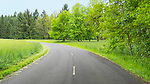 Country Road. Green dominates the color pallet at Champoeg State Heritage Area (Champoeg State Park), in Oregon's Willamette Valley south of Portland, Oregon