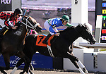 09 September 19: Jockey Michelle Rainford and Put Upon hit the wire first in the 4th race at Woodbine Racetrack in Rexdale, Ontario.