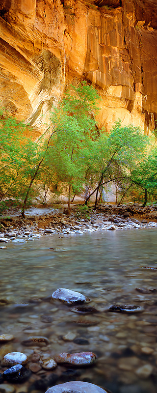North Fork Virgin River. The Narrows, Zion National Park. Utah