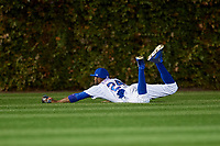 Chicago Cubs center fielder Dexter Fowler (24) makes a diving stop on a base hit in the sixth inning during Game 5 of the Major League Baseball World Series against the Cleveland Indians on October 30, 2016 at Wrigley Field in Chicago, Illinois.  (Mike Janes/Four Seam Images)