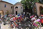 The peloton pass by the tomb of Dante Alighieri in Ravenna during Stage 13 of the 2021 Giro d'Italia, running 198km from Ravenna to Verona, Italy. 21st May 2021.  <br /> Picture: LaPresse/Massimo Paolone | Cyclefile<br /> <br /> All photos usage must carry mandatory copyright credit (© Cyclefile | LaPresse/Massimo Paolone)