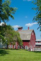 Farm barn, agricultural, red barn building, blue skies, blue sky, sunny day