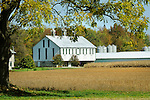 White and green barn in Union County in autumn.