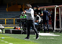 BOGOTA - COLOMBIA, 18-04-2021: Alberto Gamero, tecnico de Millonarios F. C. gesticula durante partido entre Millonarios F. C. y Deportivo Cali de la fecha 19 por la Liga BetPlay DIMAYOR I 2021 jugado en el estadio Nemesio Camacho El Campin de la ciudad de Bogota. / Alberto Gamero, coach of Millonarios F. C. gestures during a match between Millonarios F. C. and Deportivo Cali of the 19th date for the BetPlay DIMAYOR I 2021 League played at the Nemesio Camacho El Campin Stadium in Bogota city. / Photo: VizzorImage / Luis Ramirez / Staff.