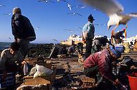 Voyage Gourmand à Essaouira / Gourmet trip ton Essaouira