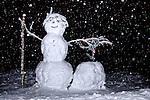 Snowman built near the Longmire entrance to Mount Rainier National Park.  Lights added.