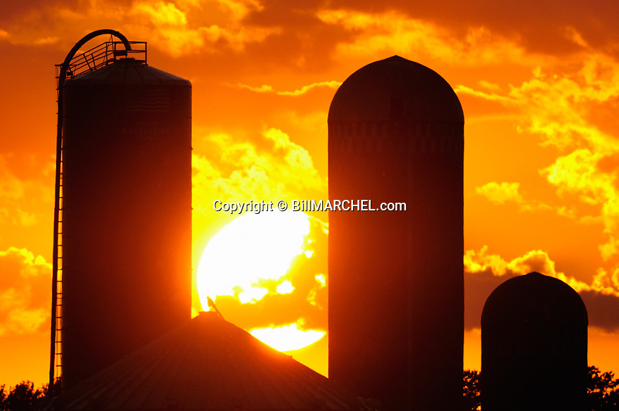01090-049.19 Sunset with farm silos silhouetted in the foreground.