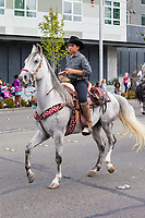 Cowboy riding white horse, Kent Cornucopia Days, Kent, Washington State, WA, USA.