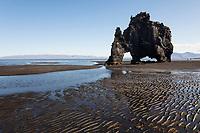 """Hvítserkur, Hvitserkur, Fels, Felsen, Basaltfels an der Ostküste der Halbinsel Vatnsnes im Nordwesten von Island, """"versteinerter Troll"""", basalt stack, Iceland"""