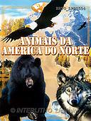 Alfredo, CUTE ANIMALS, books, paintings, BRTOLP20554,#AC# Kinderbücher, niños, libros, illustrations, pinturas