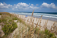 Atlantic Ocean along North Carolina's Outer Banks.  Sea Oats and a Small Ridge of Sand Separate the Beach from Beach Houses to the left.