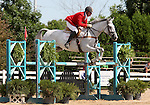 12 July 2009: Bruce Davidson Sr. riding Jam during the showjumping phase of the CIC 3* Maui Jim Horse Trials at Lamplight Equestrian Center in Wayne, Illinois.