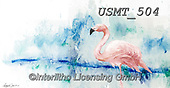 Malenda, REALISTIC ANIMALS, REALISTISCHE TIERE, ANIMALES REALISTICOS, paintings+++++,USMT504,#a#, EVERYDAY
