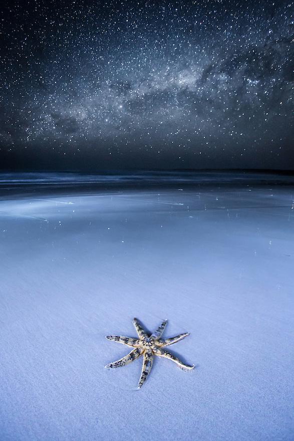 Starfish and Milky Way