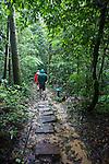 Tiputini Walkway