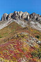 Autumn tundra at the base of Snowden mountain, Brooks Range mountains, Arctic, Alaska.