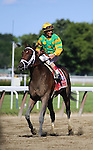 June 7, 2014: Palace Malice with John Velazquez aboard wins the Grade I Metropolitan at Belmont Park in Elmont, New York. Zoe Metz/ESW/CSM