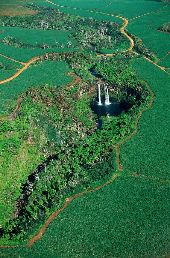 Aerial view of Wailua Falls among sugar cane fields, Hawaii, Kauai.