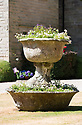 """19/06/18<br /> <br /> ***With video  https://www.youtube.com/watch?v=dRLkN49V02k  ***<br /> <br /> Pot from Pompeii.<br /> <br /> It's not just a 'good year for the roses', it might be the best ever year for the roses.<br /> <br /> The colours from a rose garden in the Derbyshire Dales stand out like an oasis surrounded by parched fields because, unbelievably, the roses need NO water to bloom.<br /> <br /> Julie Thomas (59) who owns Hopton Hall near Ashbourne said: """"The roses are the best they've ever been, they love the dry hot and sunny conditions - we don't even need to water them. <br /> <br /> """"Usually the rain would knock the petals off and we be busy dead-heading at this time of year but there's hardly anything to do at the moment. The blooms are in a kind of drought state - the flowers are staying for much longer than usual. And there are lots more flowers coming too.<br /> <br /> The classic walled english rose garden was planted with 2000 roses 12 years ago by estate manager, Spencer Tallis (51). He planted all the roses and plants in the garden in 2004 and has since made it his life's work tending them.<br /> <br /> """"I do have to water the box hedges a little but the roses are looking after themselves. Normally at this time of year we'd all be busy dead-heading but there's hardly anything to do at the moment""""<br /> <br /> Julie and her family bought the property eight years ago and have continued to plant and care for the rose garden and now open the garden for visitors.<br /> <br /> All Rights Reserved: F Stop Press Ltd. +44(0)1335 344240  www.fstoppress.com www.rkpphotography.co.uk"""