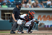 Augusta GreenJackets catcher Andres Angulo (1) sets a target as home plate umpire Josh Gilreath looks on during the game against the Kannapolis Intimidators at SRG Park on July 6, 2019 in North Augusta, South Carolina. The Intimidators defeated the GreenJackets 9-5. (Brian Westerholt/Four Seam Images)