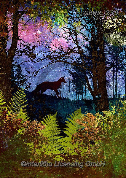 Simon, REALISTIC ANIMALS, REALISTISCHE TIERE, ANIMALES REALISTICOS, innovative, paintings+++++A_PhillT_Fox,GBWR239,#a#, EVERYDAY
