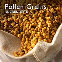 Pollen Grains Pictures    Pollen Grain Images Photos & Photography