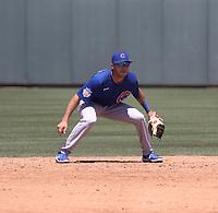 Scott McKeon - Chicago Cubs 2021 spring training (Bill Mitchell)