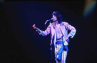 Rolling Stones, Chicago Stadium, 1975
