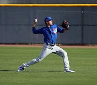 Paul Richan - Chicago Cubs 2019 spring training (Bill Mitchell)