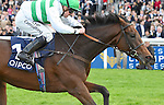 Madame Chiang (no. 10), ridden by Jim Crawley and trained by David Simcock, wins the group 1 British Champions Fillies & Mares Stakes for fillies and mares three years old and upward on October 18, 2014 at Ascot Racecourse in Ascot, Berkshire, United Kingdom.  (Bob Mayberger/Eclipse Sportswire)