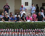 HALLANDALE BEACH, FL - FEB 10: Scenes from Gulfstream Park Handicap Day at Gulfstream Park on February 10, 2018 in Hallandale Beach, Florida. (Photo by Liz Lamont/Eclipse Sportswire/Getty Images)
