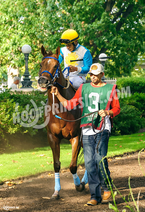 Galiana before Tax Free Shopping Distaff at Delaware Park on 9/10/16