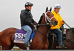 October 28, 2015:  Cavorting, trained by Kiaran McLaughlin, and owned by Stonestreet Stables LLC, is entered in the Breeder's Cup Filly & Mare Sprint $1,000,000.  Candice Chavez/ESW/CSM