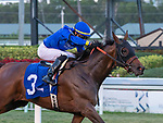 Antoinette #3, ridden by Jose L. Ortiz pulls away to win the Very One Stakes (Grade 3) on the turf on Fountain of Youth Day at Gulfstream Park in Hallandale Beach, Florida. Liz Lamont/Eclipse Sportswire/CSM