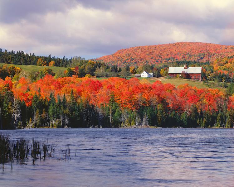 Farm scene in fall color above Keiser Pond; Harvey; VT