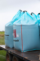 30.9.2020 Bags of wheat seed  <br /> ©Tim Scrivener Photographer 07850 303986<br />      ....Covering Agriculture In The