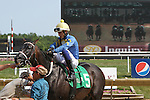 July 12, 2014:  Alex Cintron, on Picko's Pride, awaits the results of a steward's inquiry after finishing first in the Fort Delaware Stakes. Picko's Pride was disqualified to last for interference and Avarice was moved to first place at Delaware Park in Stanton Delaware. Avarice's trainer is John Robb; owners are John Robb and Herman Braude. ©Joan Fairman Kanes/ESW/CSM