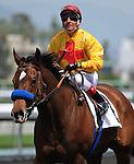 April 17, 2010.Tuscan Evening riden by Rafael Bejarano wins The Santa Barbara Handicap at Santa Anita Park, Arcadia, CA